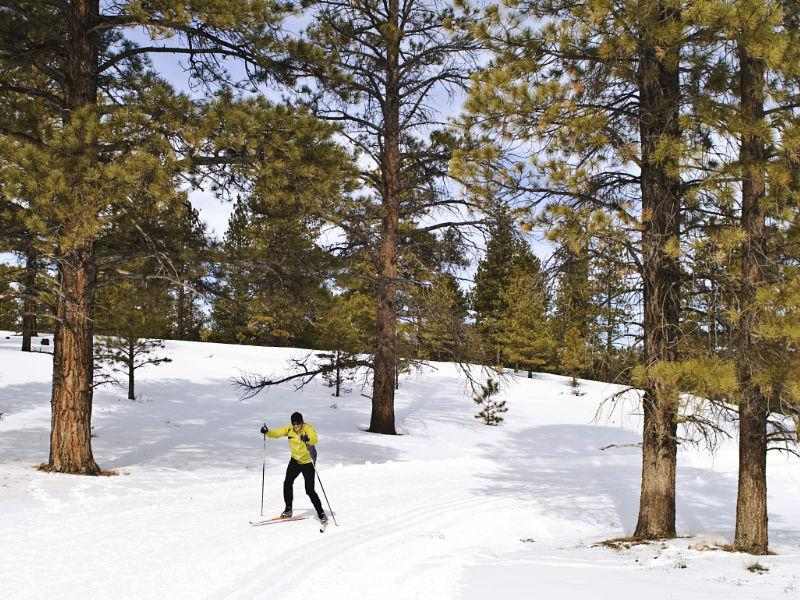Bryce National Park Skate Skiing