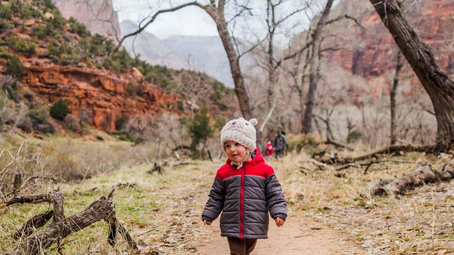 Zion National Park -1