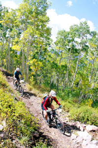 Mt-Biking-Crest-Trail