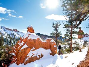 Road Trippin'  A Red Rock Winter Retreat